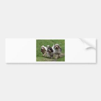 バセット犬Griffon Vendéenの壮大な犬 バンパーステッカー