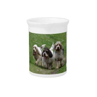 バセット犬Griffon Vendéenの壮大な犬 ピッチャー