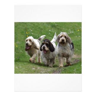バセット犬Griffon Vendéenの壮大な犬 レターヘッド
