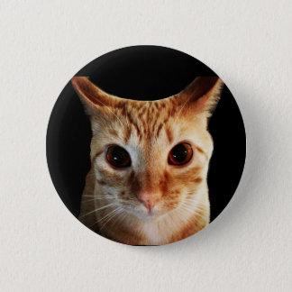 バター凝視のおもしろいな猫の円形ボタン 5.7CM 丸型バッジ
