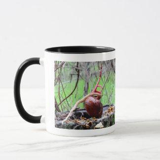 バックアイズの木の芽のマグ マグカップ