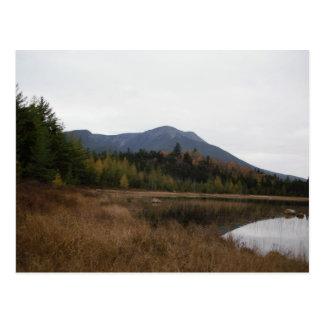 バックスターの州立公園 ポストカード