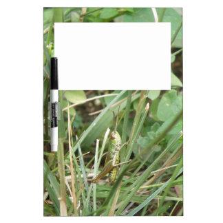 バッタのカムフラージュのメモ板 ホワイトボード