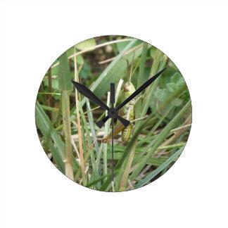 バッタのカムフラージュの柱時計 ラウンド壁時計