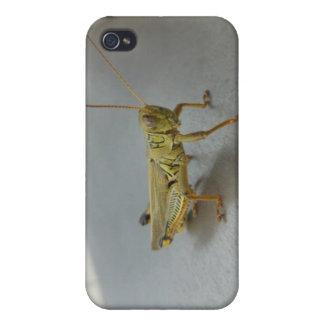 バッタのiPhoneの場合 iPhone 4 Cover
