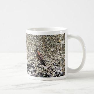 バッタ、Isla Bartolome、ガラパゴス コーヒーマグカップ