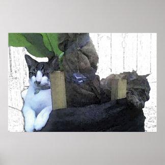 バナナの木で休んでいる猫 ポスター