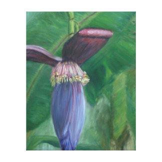 バナナの花序のキャンバスプリント キャンバスプリント
