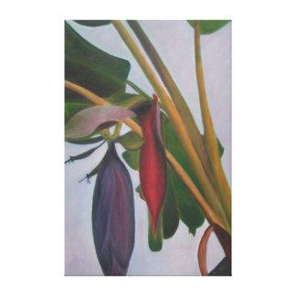 バナナの花序IIのキャンバスプリント キャンバスプリント