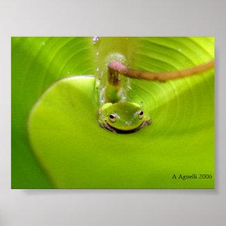 バナナの葉に隠れているカエル ポスター