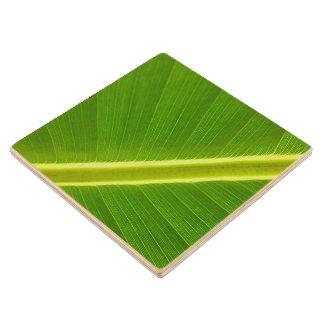 バナナの葉のマクロ ウッドコースター