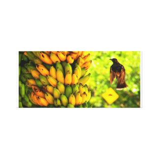 バナナの鳥 キャンバスプリント