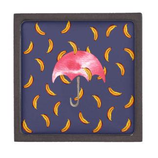 バナナを雨が降っています ギフトボックス