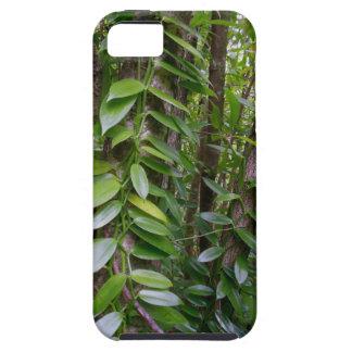 バニラ蘭のつる植物 iPhone SE/5/5s ケース