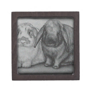 バニーのスケッチのウサギの動物のチョークの芸術 ギフトボックス