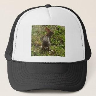 バニーウサギのノウサギの物 キャップ