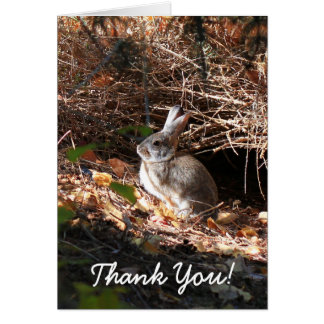 バニーウサギの挨拶状ありがとう グリーティングカード