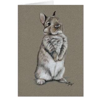 バニーウサギの芸術のメッセージカード カード