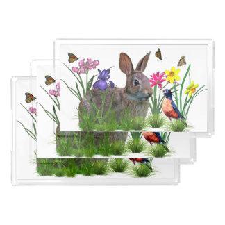 バニーウサギ、カスタマイズ可能なロビンおよび花 アクリルトレー