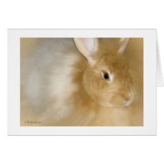 バニーウサギ(カラメル) カード