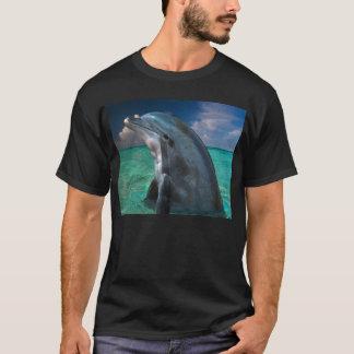 バハマのイルカ Tシャツ