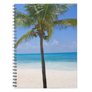 バハマのヤシの木 ノートブック