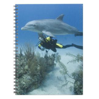 バハマの壮大なBahama島、フリーポート、スキューバ ノートブック