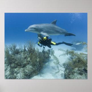 バハマの壮大なBahama島、フリーポート、スキューバ ポスター