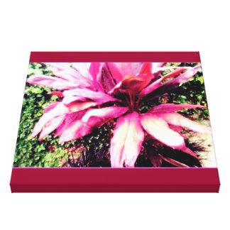 バハマの花 キャンバスプリント