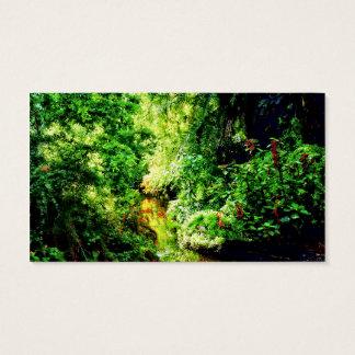 バハマ-熱帯楽園 名刺