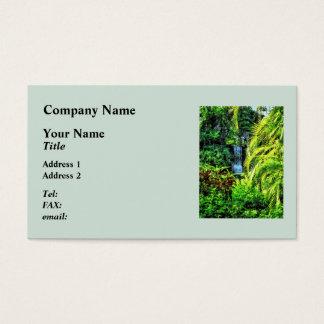 バハマ-熱帯滝 名刺