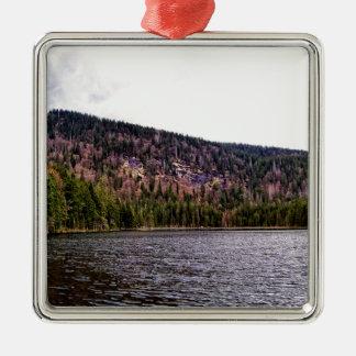 ババリアの素晴らしいArbersee シルバーカラー正方形オーナメント