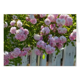バラが付いている白い棒杭の囲い グリーティングカード
