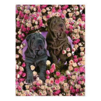 バラのベッドのかわいいSharのpeiの子犬 ポストカード