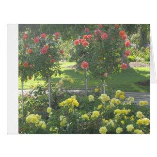 バラの楽園 カード