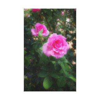 バラの美しい キャンバスプリント