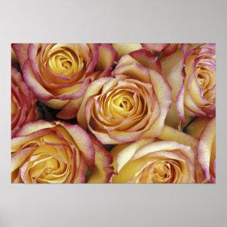 バラの花束 ポスター