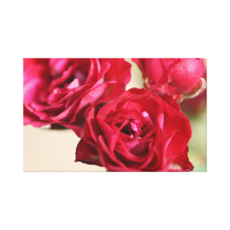 バラは赤いです キャンバスプリント