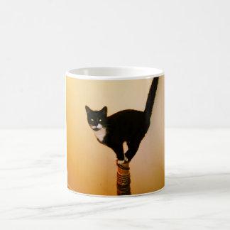 バランス猫のマグ コーヒーマグカップ