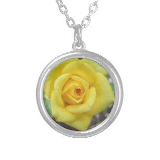 バラ園の花の小型黄色 シルバープレートネックレス