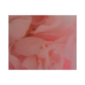 バラ色の白熱シャクヤクの花 キャンバスプリント
