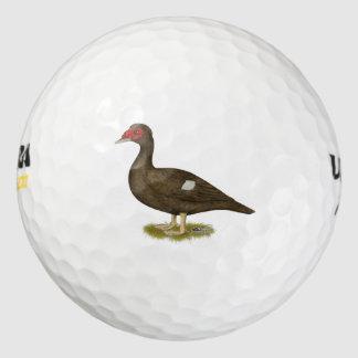 バリケンチョコレート ゴルフボール