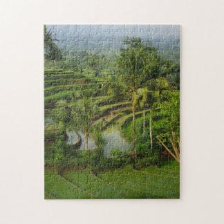 バリ島の台地Ricefield ジグソーパズル