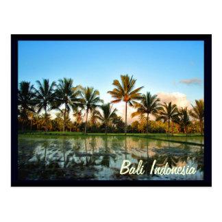 バリ島インドネシア ポストカード