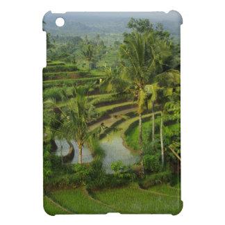 バリ島-若い台地のricefieldsおよびやし iPad miniケース