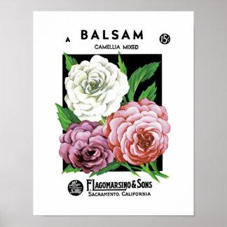 バルサムの種の包みのラベル ポスター