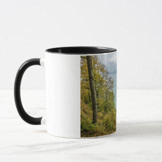 バルト海の海岸の沿岸森林 マグカップ