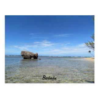 バルバドス-東海岸1 ポストカード