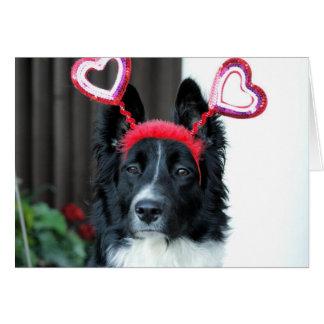 バレンタインのボーダーコリーの挨拶状 カード