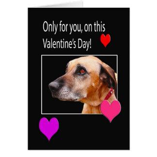 バレンタインのRhodesian Ridgebackのあなたのためにだけ カード